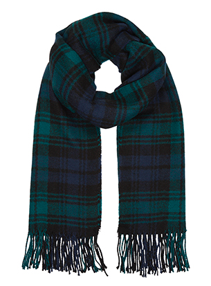 Accessorize Emerald Check Blanket Scarf